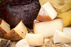totera-cheese